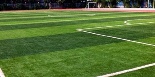 人造草坪足球场.png